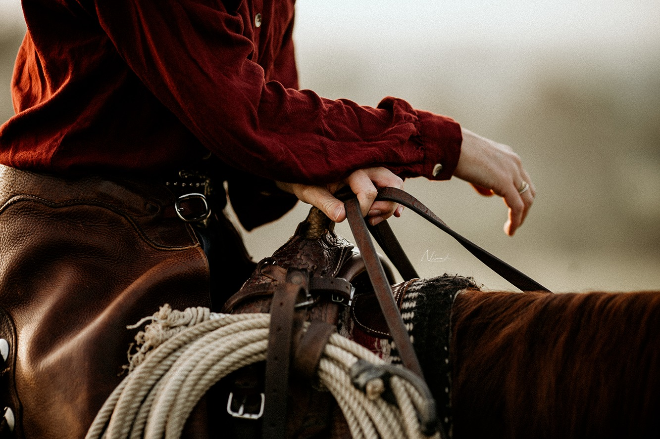 rope - detail - western style