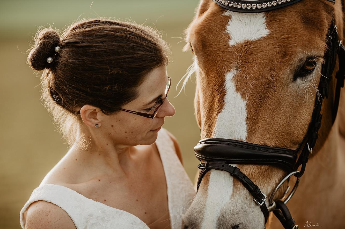 Pferdefotograf tübingen - Hochzeit - Haflinger